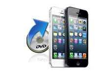 iphone dvd
